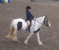 Fiona under saddle in New Jersey