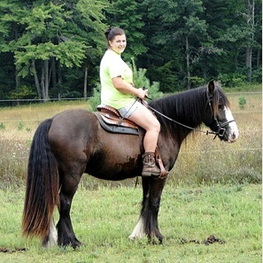 Feathered Gold Blue Torrent, 2010 Gypsy Vanner Horse gelding