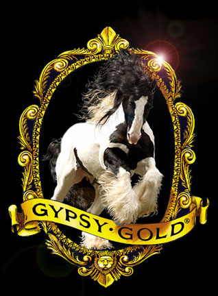 Gypsy Gold Farm, Gypsy Vanner Horse breeders in FL