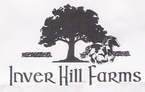 Inver Hill Farm, Gypsy Vanner Horse breeders in Inverness, FL